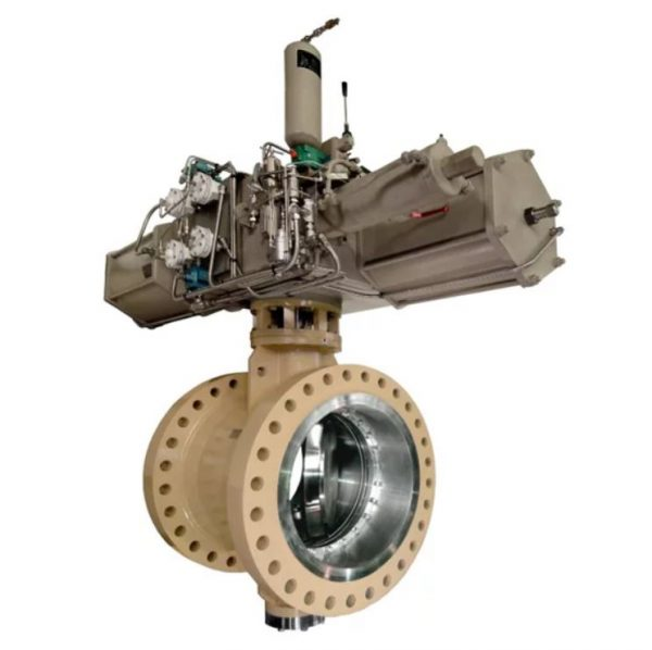 Type BN soft seated butterfly valves